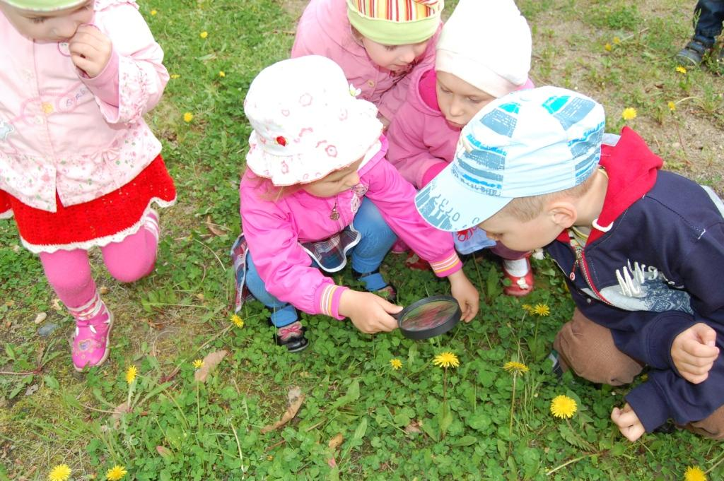 Kids study nature with magnifying lens in Lazovsky district / (с) Phoenix Fund