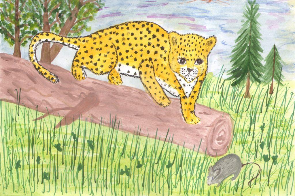 Картинки приморский край природа рисунки